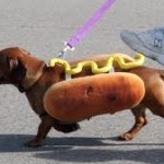 Writing: Not a Hot Dog Eating Contest