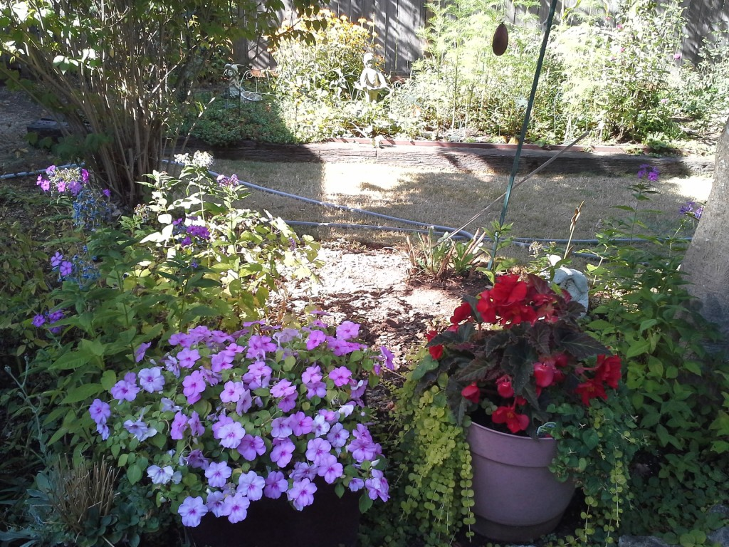 cascade of flowers