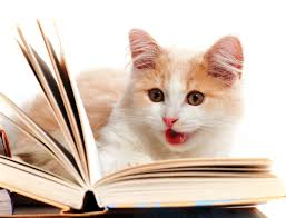 Read Cat loves good dialogue.