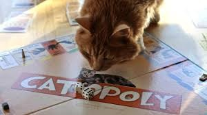 download catmonopoly